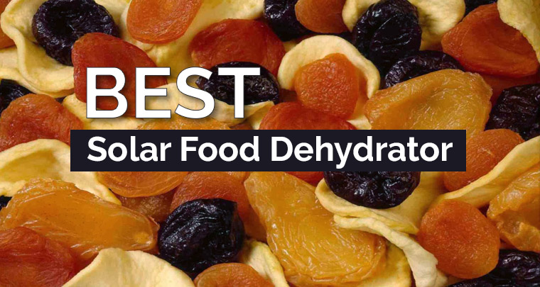 Solar Food Dehydrator Reviews